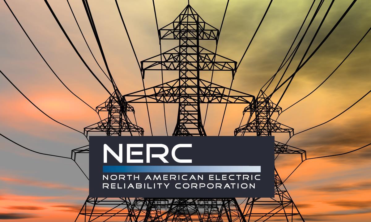 NERC 2020 report